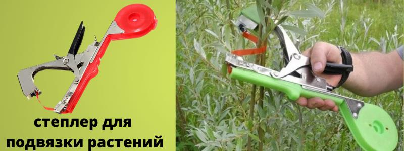 Уникальный степлер для растений