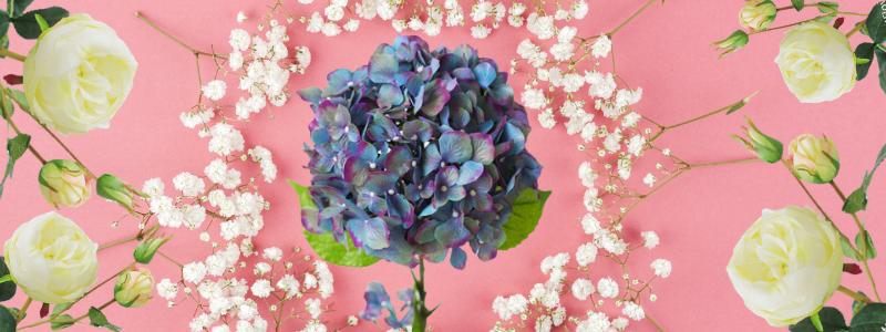 Создай образ! Выбери свой любимый цветок!!!