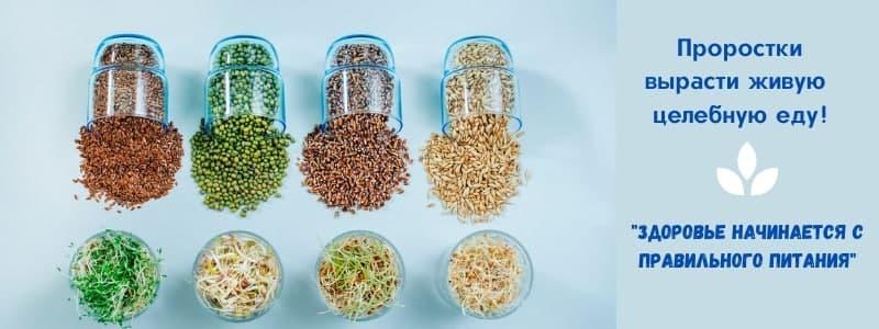 ПроРостки - живая целебная еда. Все для проращивания. СТОП 12.05