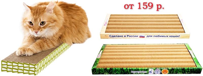 Котик дерёт диван? Тебе поможет картонная когтеточка!