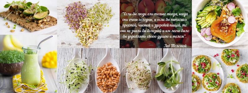 Микрозелень - кладезь витаминов. ДОЗАКАЗ!